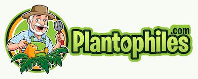Plantophiles