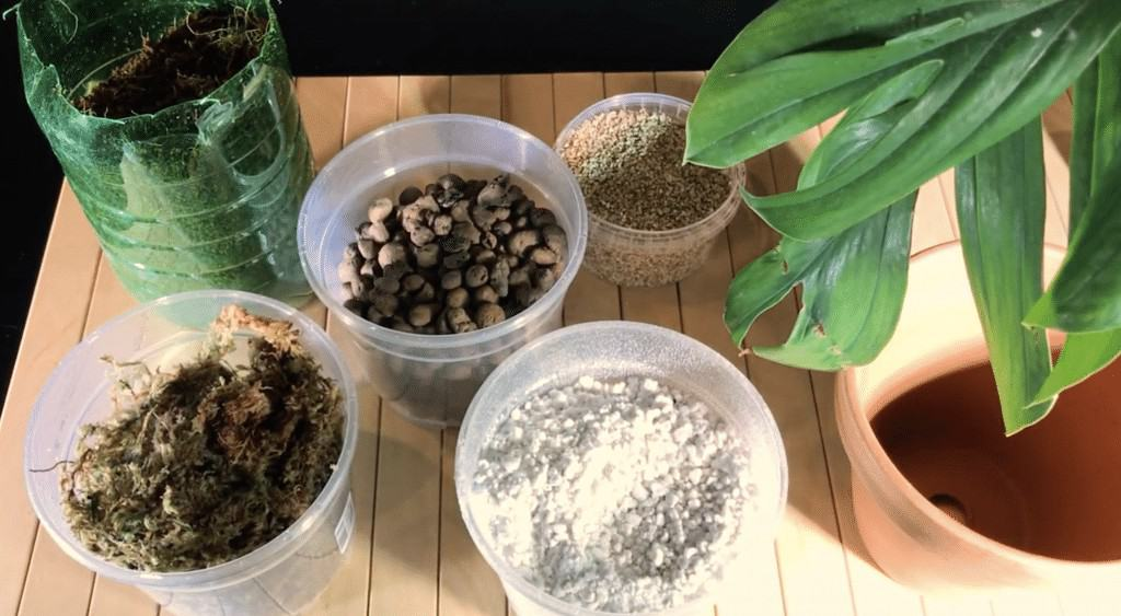 Well Draining Houseplant Potting Mix