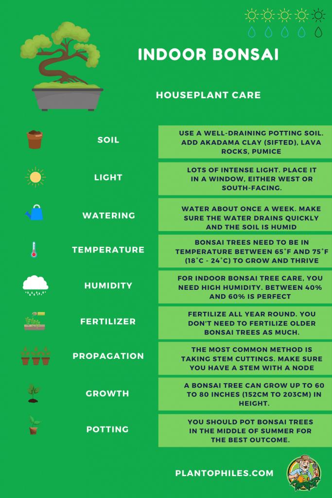 Bonsai Tree Care Sheet