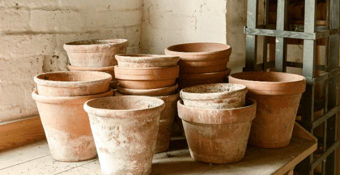Showing Regular Plant Pots