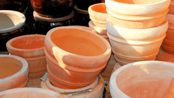 Terracotta pots are great for repotting but plants need more waterings