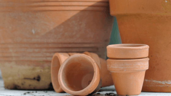 I just love the patina on older terracotta pots