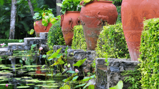 Are Terracotta Pots Good for Plants? The Truth