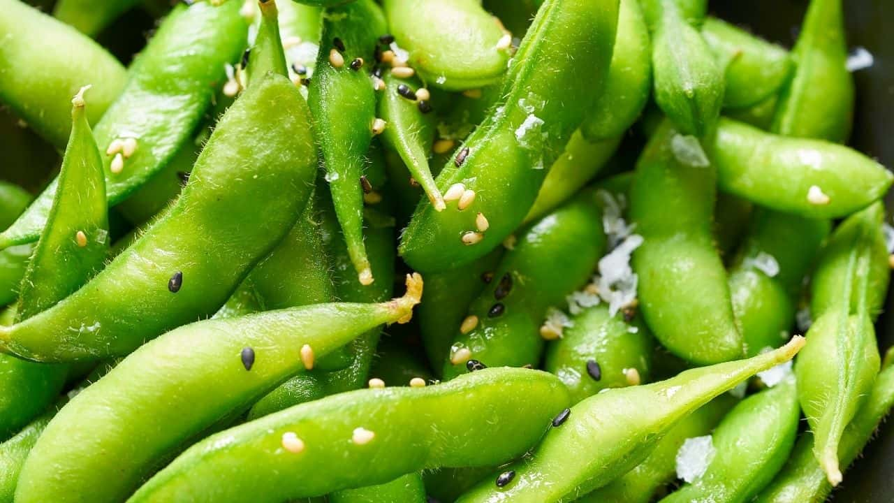 14 Easiest Vegetables to Grow from Seed 14