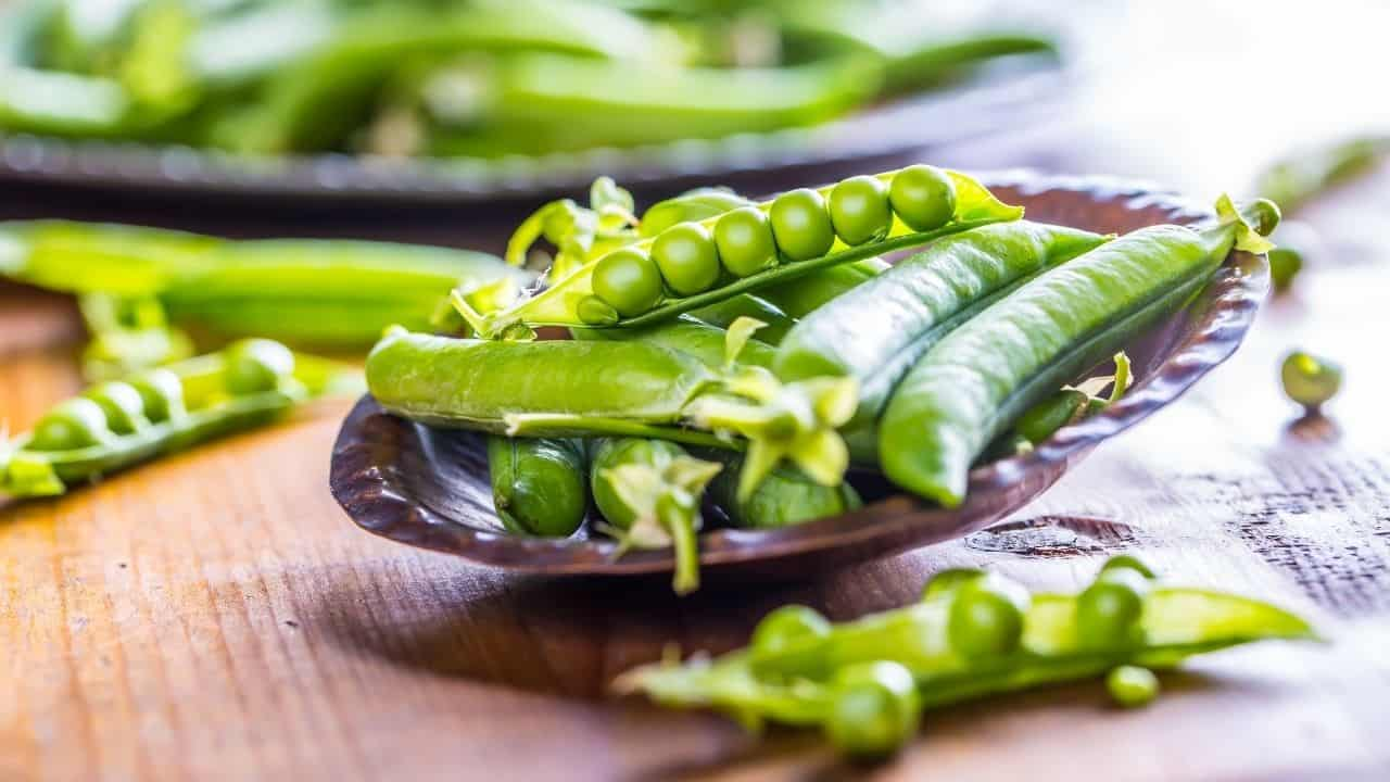 12 Best Vegetables to Plant in Spring 1