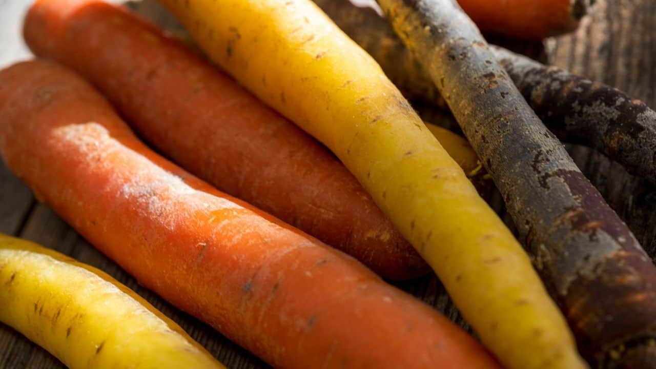 12 Best Vegetables to Plant in Spring 5