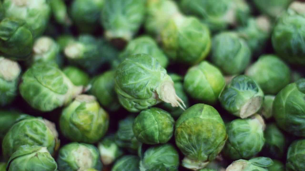 11 Hardy Vegetables To Grow in your Garden 2
