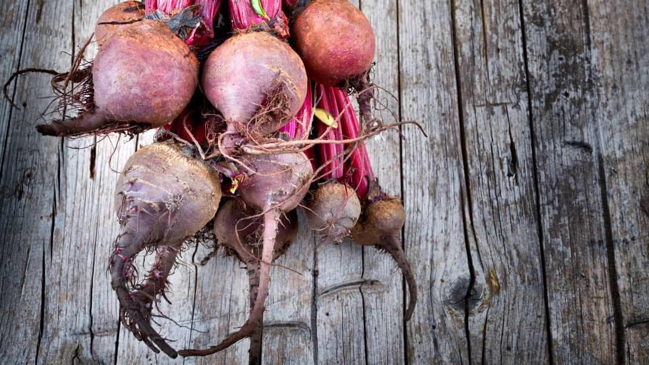 11 Vegetables Grown Underground 1