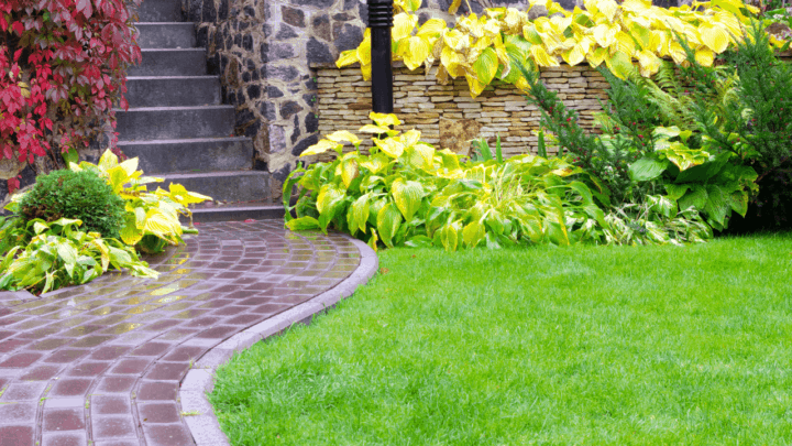 8 Best Fertilizers For Grass – A Buyers Guide