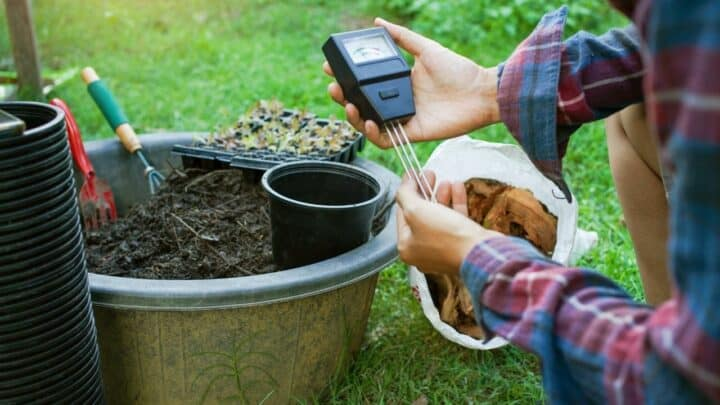 How to pH Up and Down in Soil The Right Way