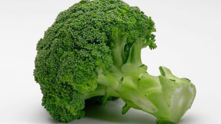 What To Plant With Broccoli? The Answer!