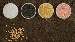 Fertilizer In Soil