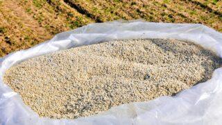 Nitrogen In Soil